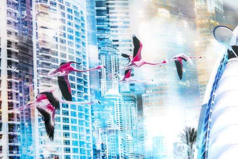 City of Dreams, 2012 by Joseph Klibansky