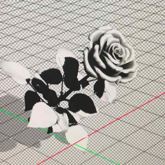 Here a 3D view of the rose 🌹 we modeled as part of a new bronze sculpture. . . #art #rose #artvideos