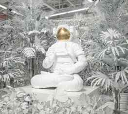 Welcome to my white jungle 🌱