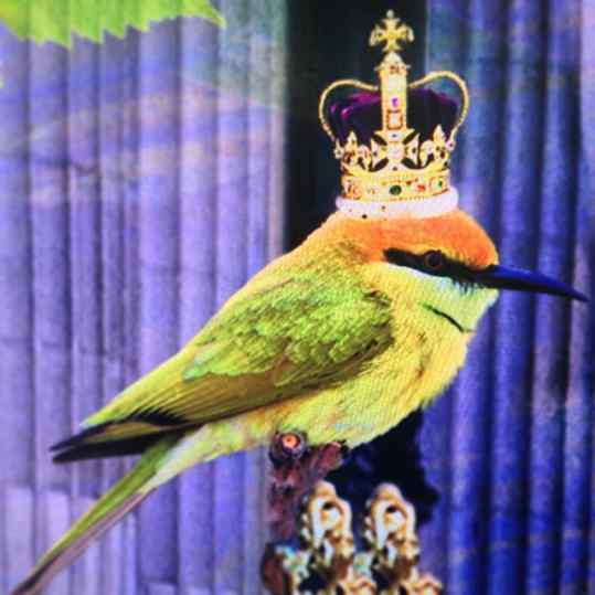 Who has found king #tweet in my ne #london #artwork ?